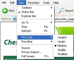 Increasing text size in Internet Explorer